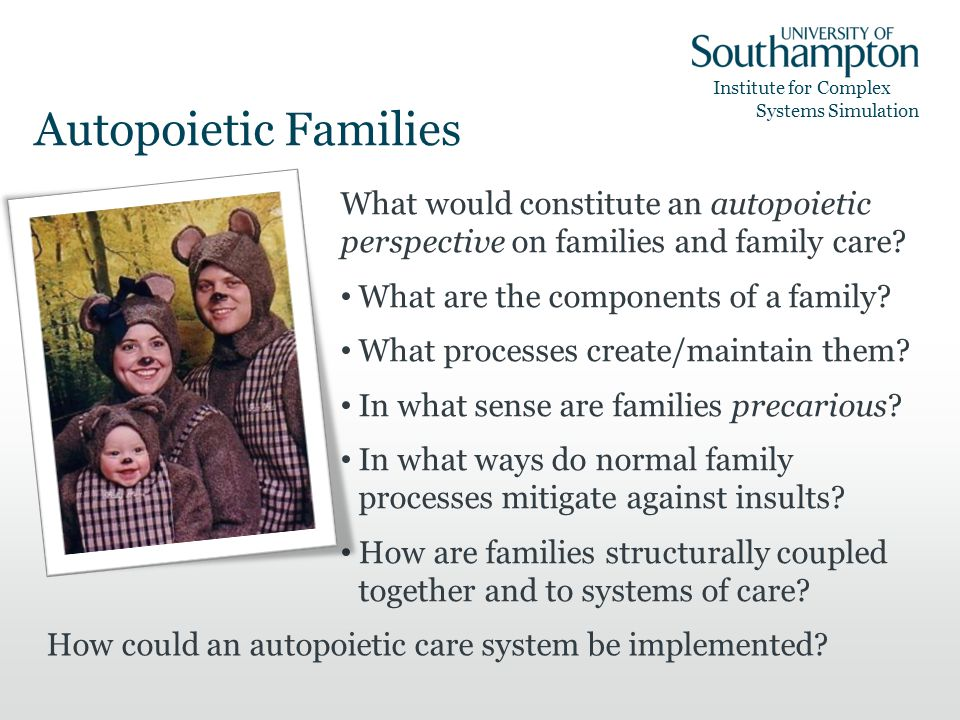 Institute for Complex Systems Simulation Autopoietic Families What would constitute an autopoietic perspective on families and family care.