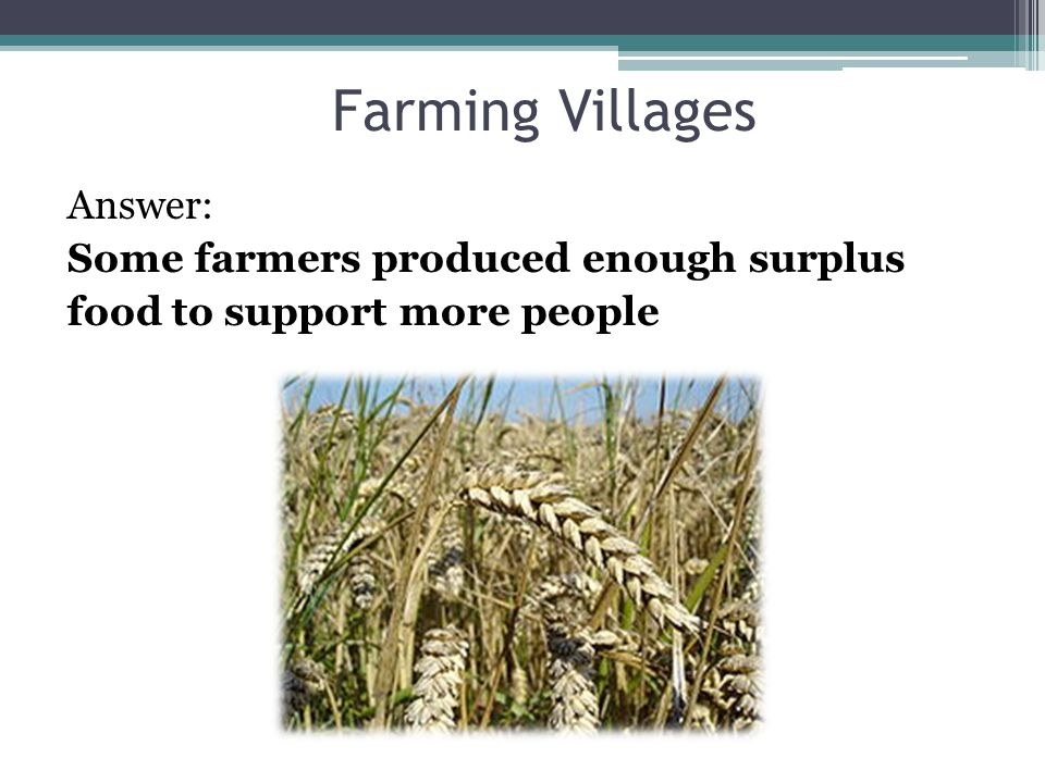 Farming Villages Answer: Some farmers produced enough surplus food to support more people