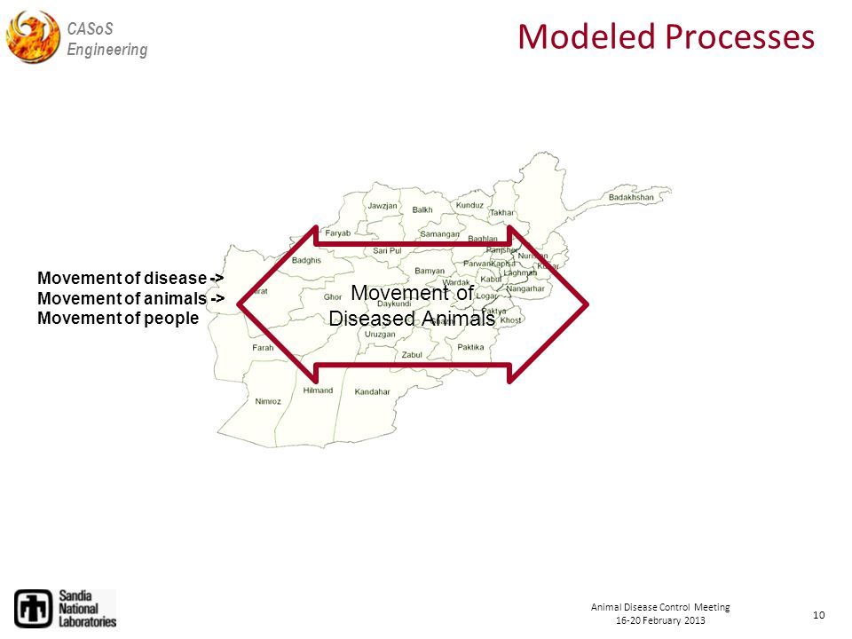 CASoS Engineering Animal Disease Control Meeting February 2013 Modeled Processes 10 Movement of Diseased Animals Movement of disease -> Movement of animals -> Movement of people