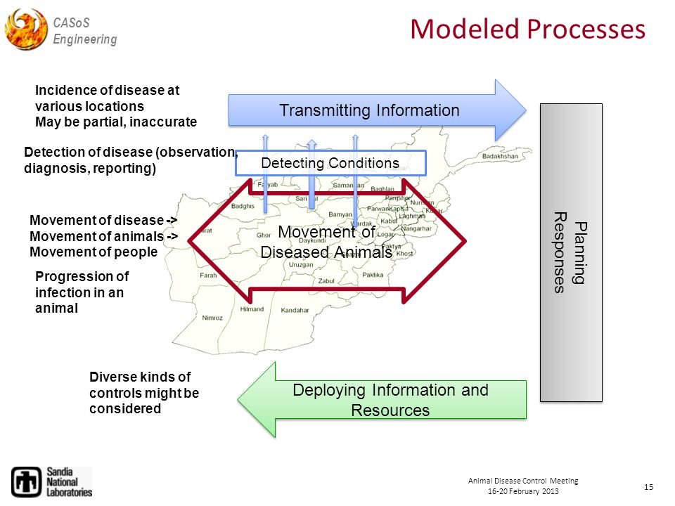 CASoS Engineering Animal Disease Control Meeting February 2013 Modeled Processes 15 Movement of Diseased Animals Movement of disease -> Movement of animals -> Movement of people Progression of infection in an animal Detecting Conditions Detection of disease (observation, diagnosis, reporting) Transmitting Information Incidence of disease at various locations May be partial, inaccurate Planning Responses Planning Responses Deploying Information and Resources Diverse kinds of controls might be considered