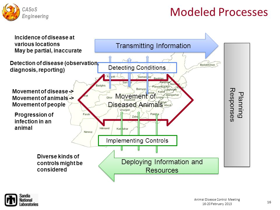 CASoS Engineering Animal Disease Control Meeting February 2013 Movement of Diseased Animals Transmitting Information Planning Responses Planning Responses Deploying Information and Resources Detecting Conditions Implementing Controls Modeled Processes Movement of disease -> Movement of animals -> Movement of people Progression of infection in an animal Detection of disease (observation, diagnosis, reporting) Incidence of disease at various locations May be partial, inaccurate Diverse kinds of controls might be considered 16