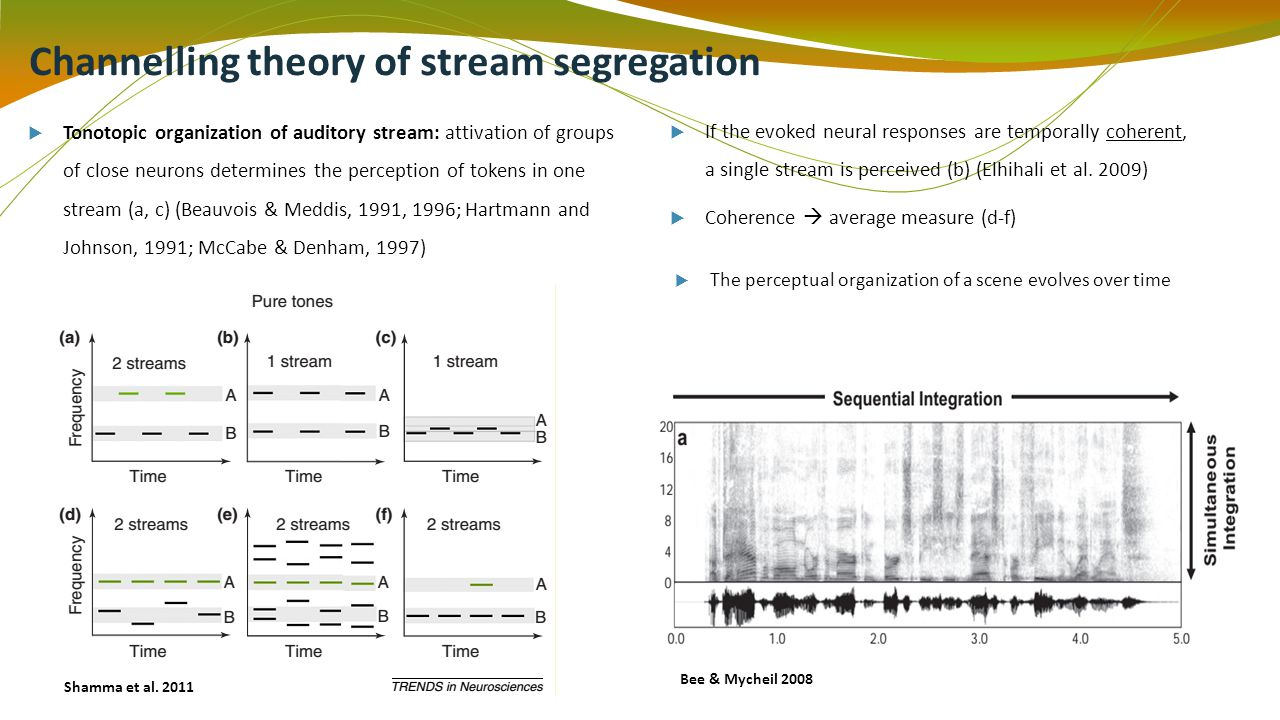 Channelling theory of stream segregation Tonotopic organization of auditory stream: attivation of groups of close neurons determines the perception of tokens in one stream (a, c) (Beauvois & Meddis, 1991, 1996; Hartmann and Johnson, 1991; McCabe & Denham, 1997) If the evoked neural responses are temporally coherent, a single stream is perceived (b) (Elhihali et al.
