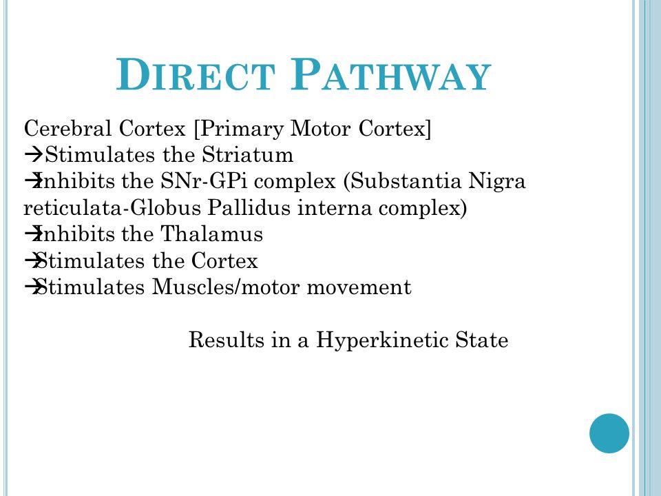 D IRECT P ATHWAY Cerebral Cortex [Primary Motor Cortex] Stimulates the Striatum Inhibits the SNr-GPi complex (Substantia Nigra reticulata-Globus Pallidus interna complex) Inhibits the Thalamus Stimulates the Cortex Stimulates Muscles/motor movement Results in a Hyperkinetic State