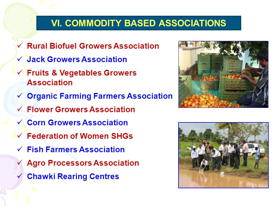 Rural Biofuel Growers Association Jack Growers Association Fruits & Vegetables Growers Association Organic Farming Farmers Association Flower Growers Association Corn Growers Association Federation of Women SHGs Fish Farmers Association Agro Processors Association Chawki Rearing Centres VI.