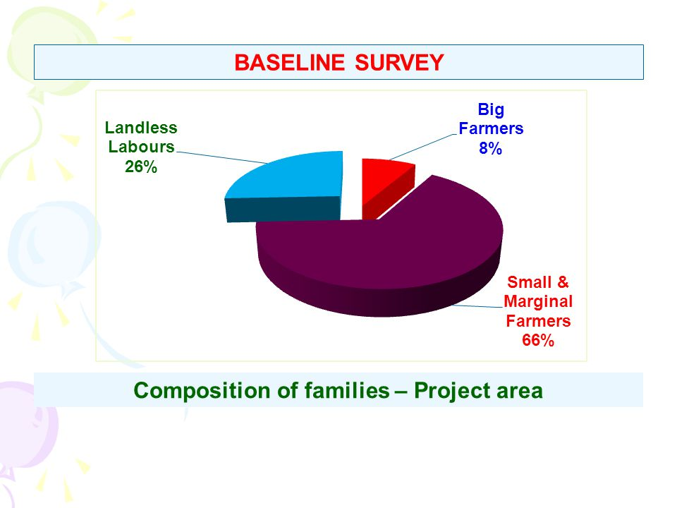 BASELINE SURVEY Composition of families – Project area