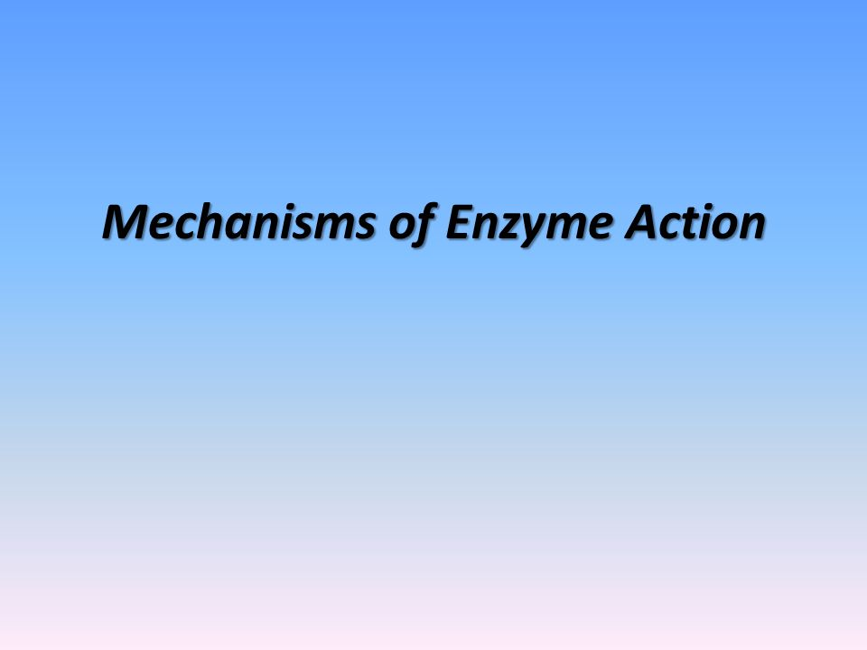 What You Need to Know Understand the importance of and need for enzymes in biological reactions.