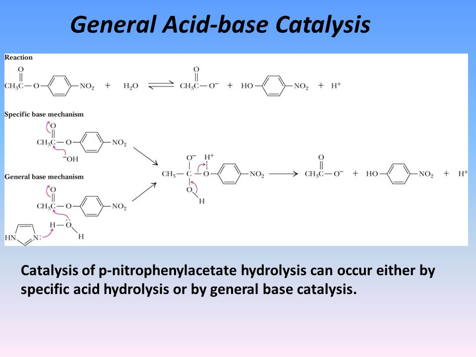 General Acid-base Catalysis Catalysis of p-nitrophenylacetate hydrolysis can occur either by specific acid hydrolysis or by general base catalysis.