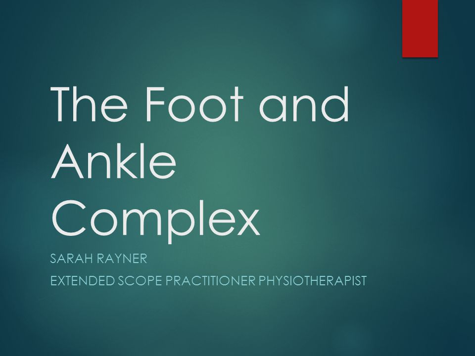 Anatomy The ankle and foot is a complex structure comprised of 28 bones (including 2 sesamoid bones) and 55 articulations (including 30 synovial joints), interconnected by ligaments and muscles In addition to sustaining substantial forces, the foot and ankle serve to convert the rotational movements that occur with weight bearing activities into sagittal, frontal, and transverse movements
