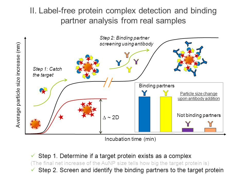 II. Label-free protein complex detection and binding partner analysis from real samples Step 1. Determine if a target protein exists as a complex (The