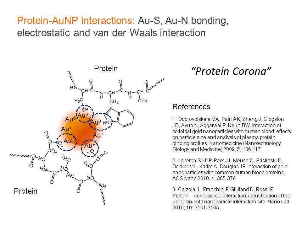 Protein-AuNP interactions: Au-S, Au-N bonding, electrostatic and van der Waals interaction Au 0 Au + Au 0 Au + Protein References 1. Dobrovolskaia MA,