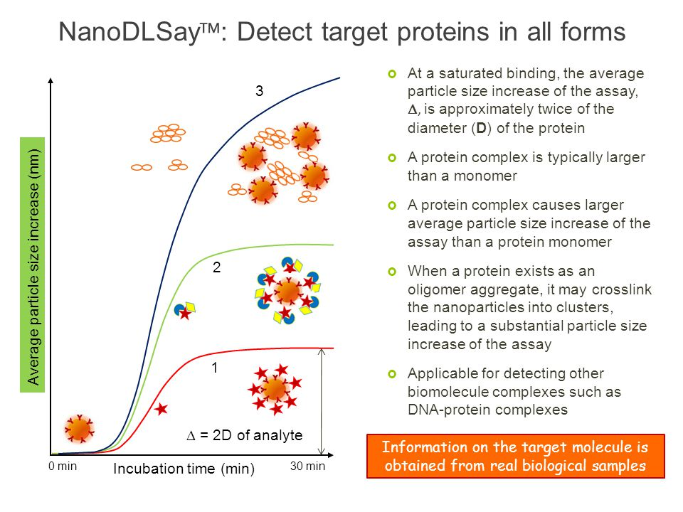 Average particle size increase (nm) Incubation time (min) = 2D of analyte 0 min 30 min 1 2 3 At a saturated binding, the average particle size increas
