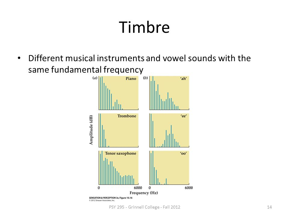 Timbre Can define a tone by its pitch and loudness Complex sounds have many spectral components Its qualitative character depends on it spectral shape