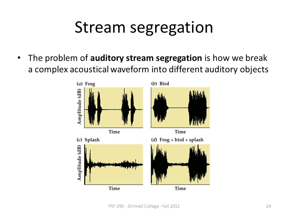 Different sounds have lots of spectral overlap Position on cochlea is not sufficient to separate different sounds! PSY 295 - Grinnell College - Fall 2