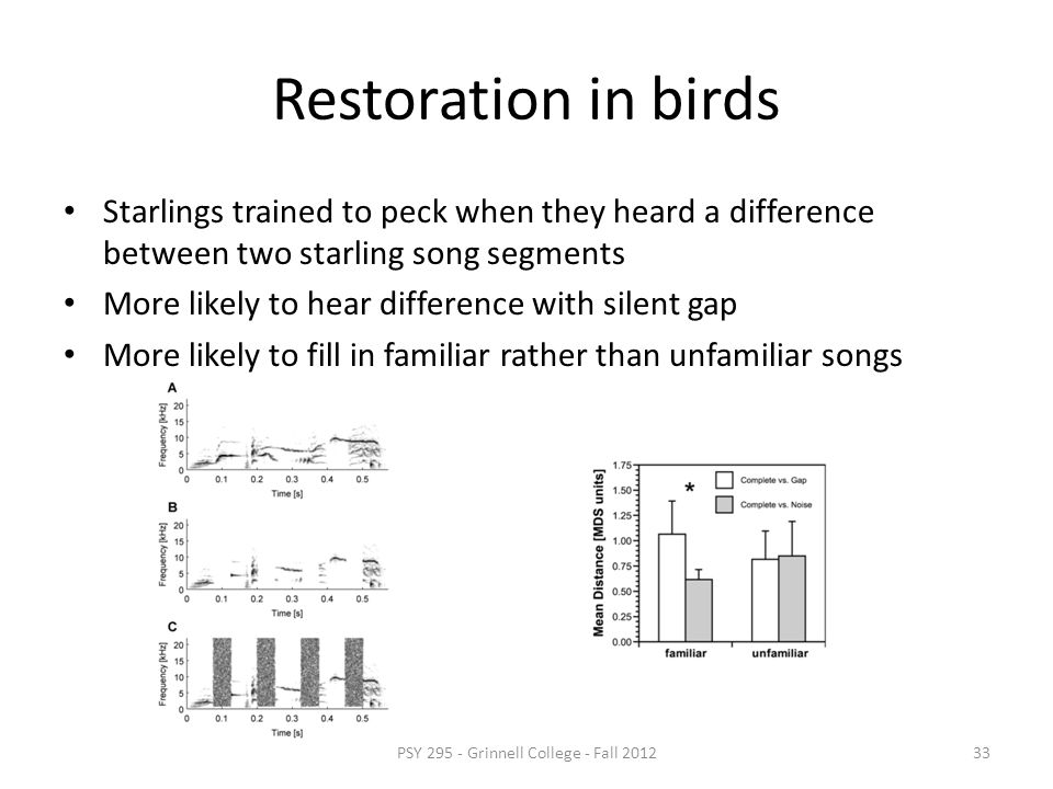 Perceptual restoration of speech Deleting parts of speech and replacing them with noise, cough, etc.. leads to completion Often people cannot say whic