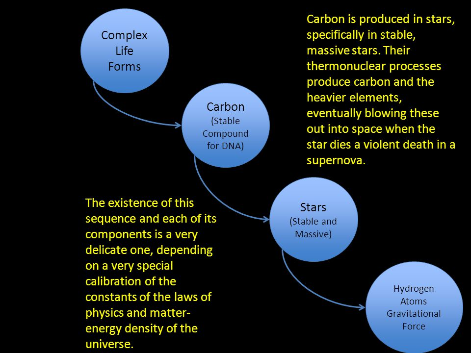 Complex Life Forms Carbon (Stable Compound for DNA) Carbon (Stable Compound for DNA) Stars (Stable and Massive) Stars (Stable and Massive) Hydrogen Atoms Gravitational Force Carbon is produced in stars, specifically in stable, massive stars.