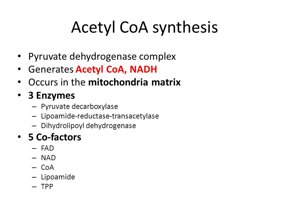 Acetyl CoA synthesis Pyruvate dehydrogenase complex Generates Acetyl CoA, NADH Occurs in the mitochondria matrix 3 Enzymes – Pyruvate decarboxylase –