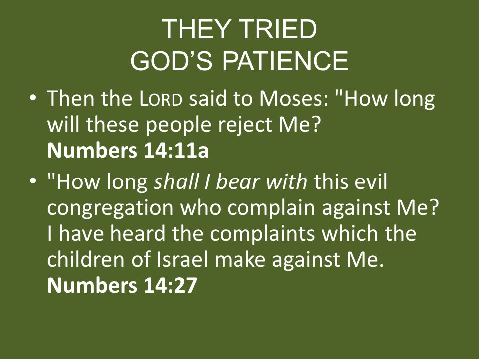 THEY TRIED GODS PATIENCE Then the L ORD said to Moses: