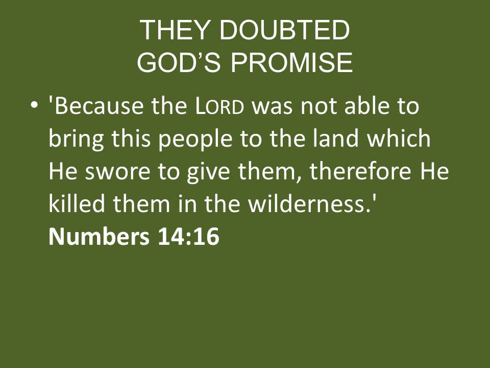 THEY DOUBTED GODS PROMISE 'Because the L ORD was not able to bring this people to the land which He swore to give them, therefore He killed them in th