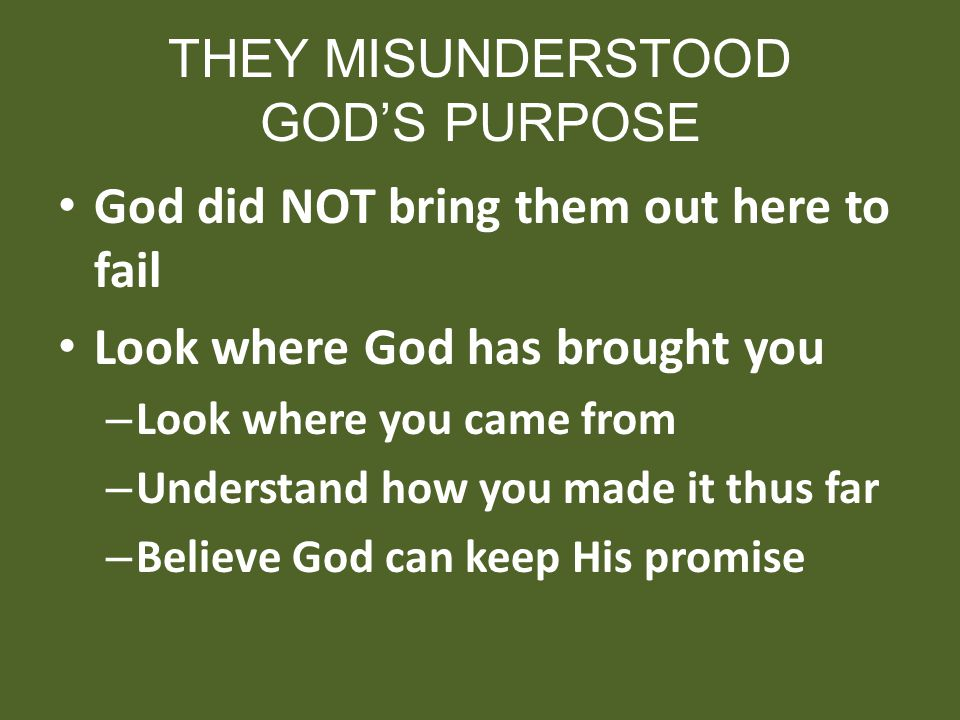 THEY MISUNDERSTOOD GODS PURPOSE God did NOT bring them out here to fail Look where God has brought you – Look where you came from – Understand how you