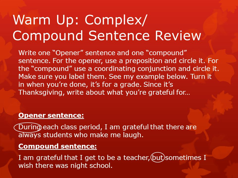 Warm Up: Complex/ Compound Sentence Review Write one Opener sentence and one compound sentence.