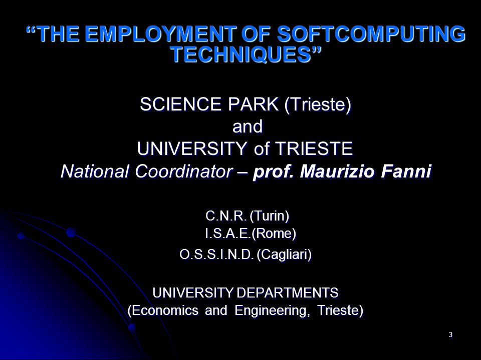 3 THE EMPLOYMENT OF SOFTCOMPUTING TECHNIQUES SCIENCE PARK (Trieste) and and UNIVERSITY of TRIESTE National Coordinator – prof.