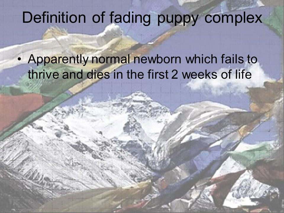 Signs of fading puppy complex Failure to gain weight at same rate of siblings Decreased activity Inability or refusal to suckle High pitched cry Progression to lethargy, loss of tone, death