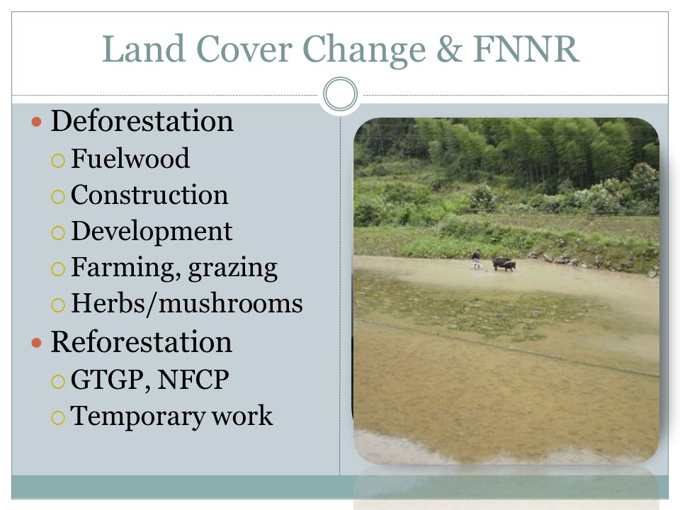 Land Cover Change & FNNR Deforestation Fuelwood Construction Development Farming, grazing Herbs/mushrooms Reforestation GTGP, NFCP Temporary work