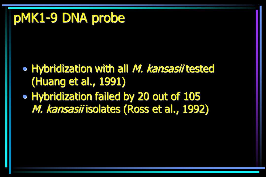 DNA probe developed for M.