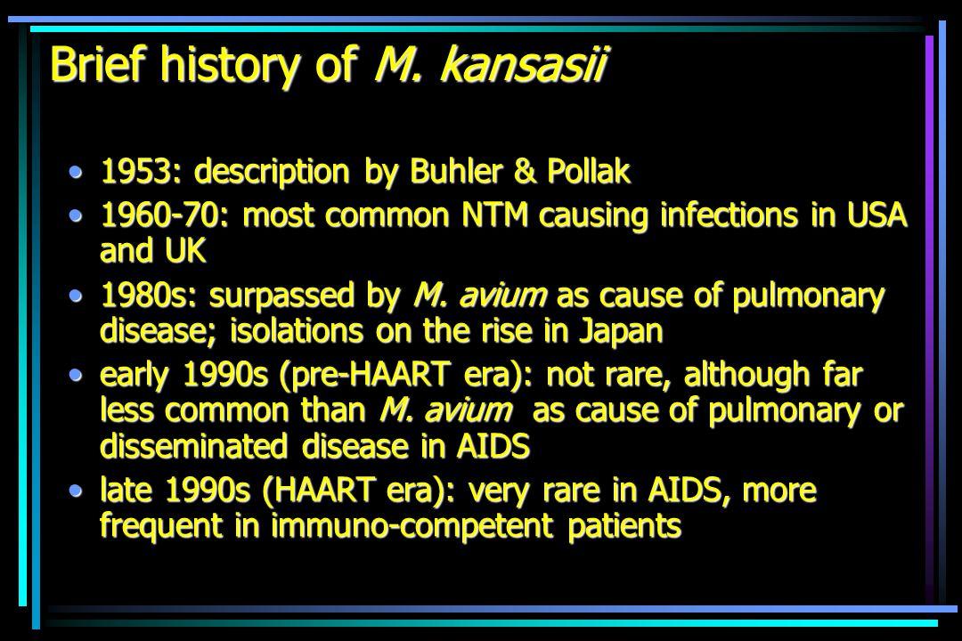 Mycobacterium kansasii, species or complex.