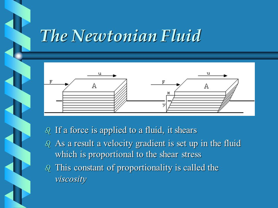 The Newtonian Fluid b If a force is applied to a fluid, it shears b As a result a velocity gradient is set up in the fluid which is proportional to the shear stress b This constant of proportionality is called the viscosity