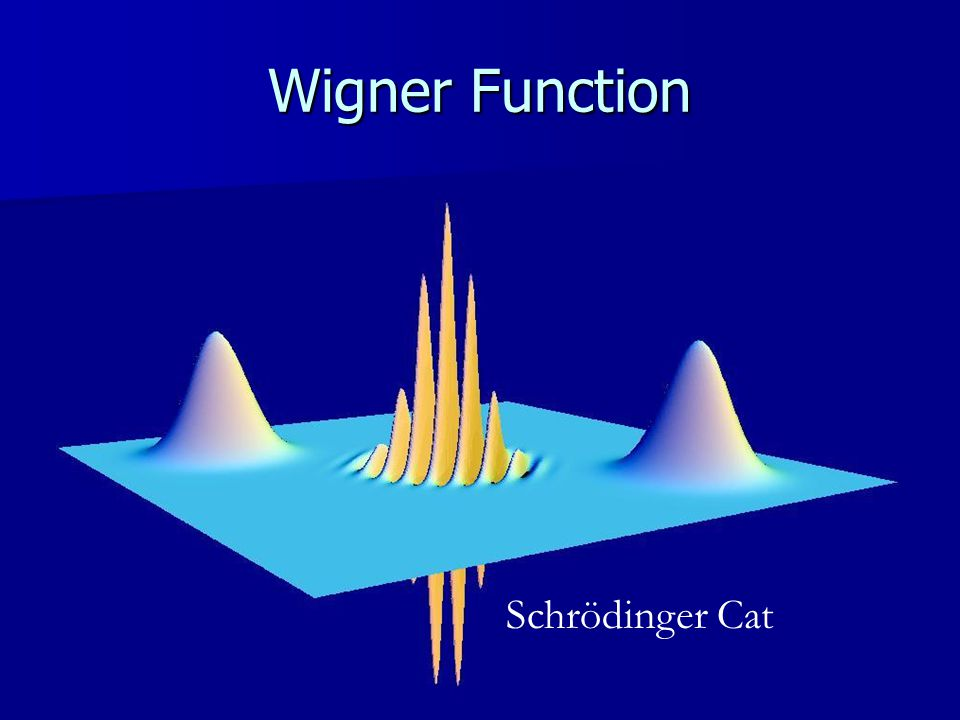 Wigner Function Schrödinger Cat