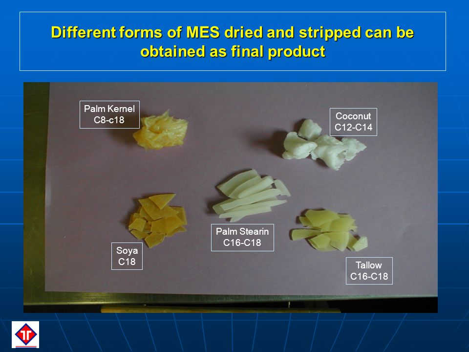 Palm Kernel C8-c18 Coconut C12-C14 Palm Stearin C16-C18 Soya C18 Tallow C16-C18 Different forms of MES dried and stripped can be obtained as final product
