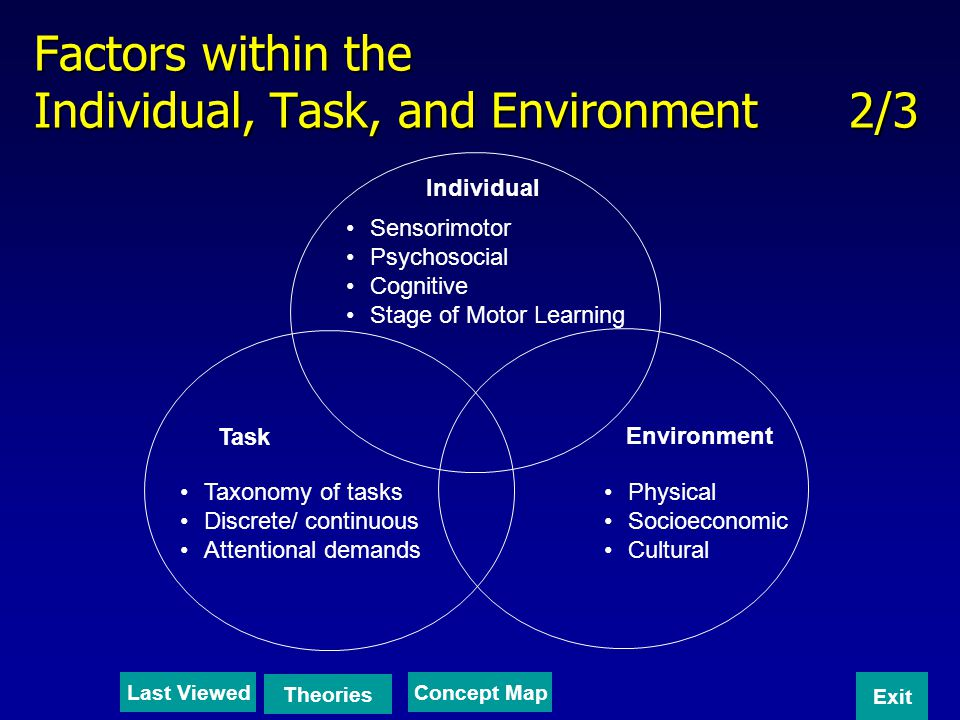 Factors within the Individual, Task, and Environment 2/3 Individual Task Environment Sensorimotor Psychosocial Cognitive Stage of Motor Learning Taxon
