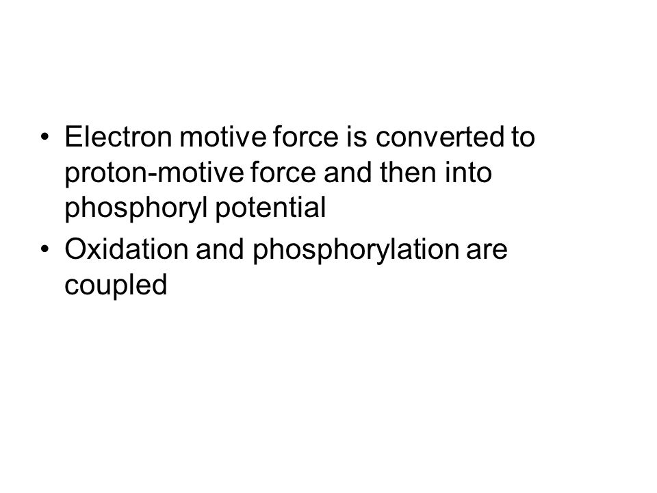 Electron motive force is converted to proton-motive force and then into phosphoryl potential Oxidation and phosphorylation are coupled
