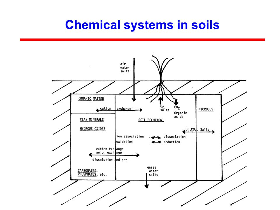 Chemical systems in soils