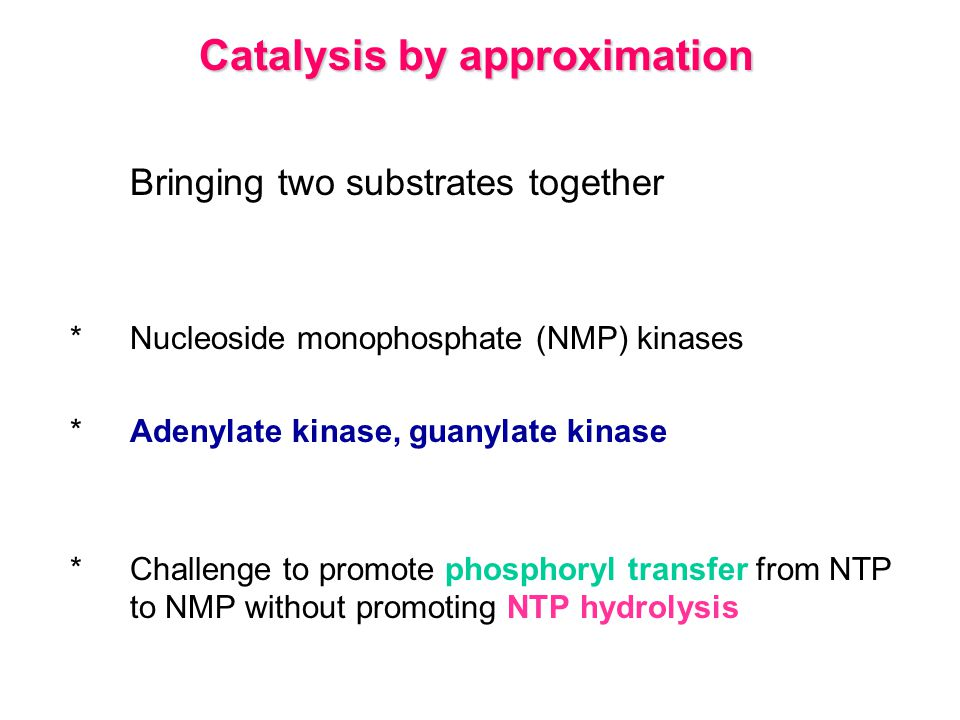 Multienzyme catalysis Bringing enzymes together *Structural integration of different kinds of enzymes makes the coordinated catalysis of a complex reaction possible *The proximity of one enzyme to another increases the overall reaction rate and minimizes side reactions *Pyruvate dehydrogenase complex
