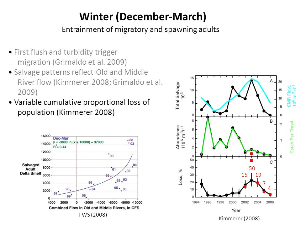 Winter (December-March) Entrainment of migratory and spawning adults Kimmerer (2008) 15 50 19 7 4 First flush and turbidity trigger migration (Grimaldo et al.