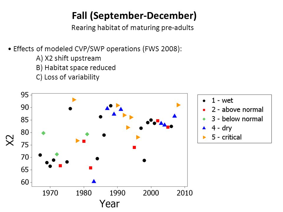 Fall (September-December) Rearing habitat of maturing pre-adults Effects of modeled CVP/SWP operations (FWS 2008): A) X2 shift upstream B) Habitat space reduced C) Loss of variability