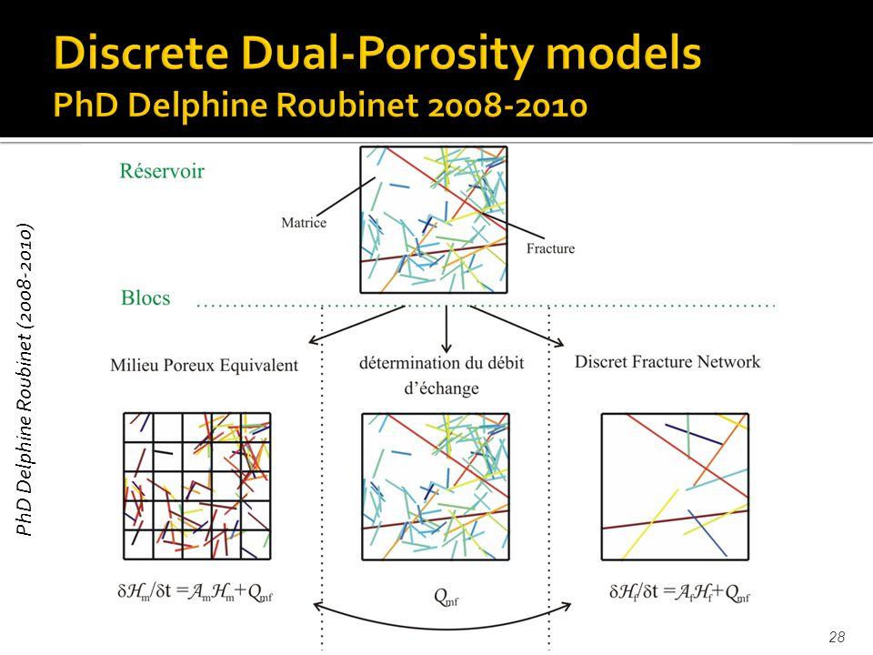 J.-R. de Dreuzy, HDR28 PhD Delphine Roubinet (2008-2010)
