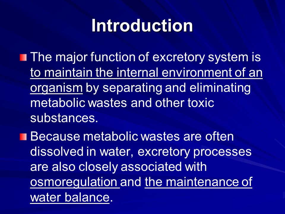 Introduction The major function of excretory system is to maintain the internal environment of an organism by separating and eliminating metabolic was