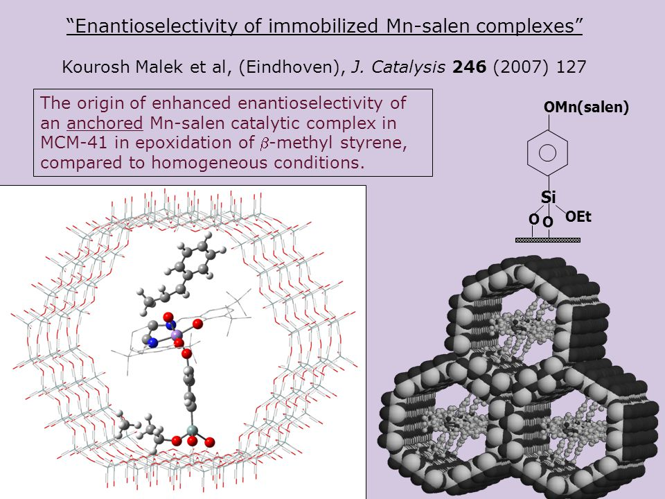 Enantioselectivity of immobilized Mn-salen complexes Kourosh Malek et al, (Eindhoven), J.