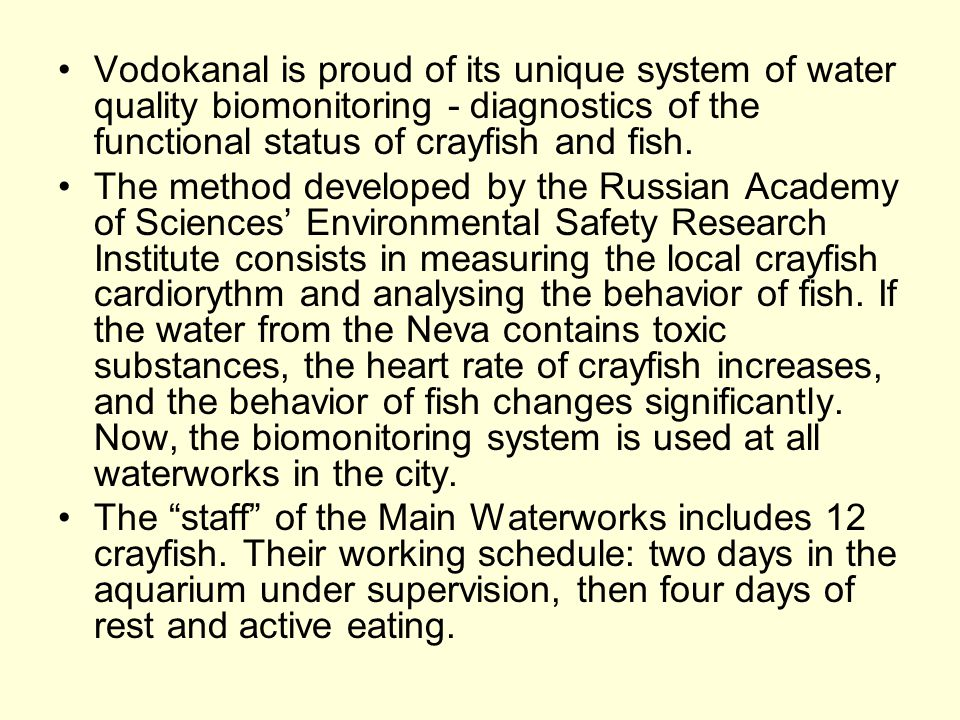 Vodokanal is proud of its unique system of water quality biomonitoring - diagnostics of the functional status of crayfish and fish. The method develop