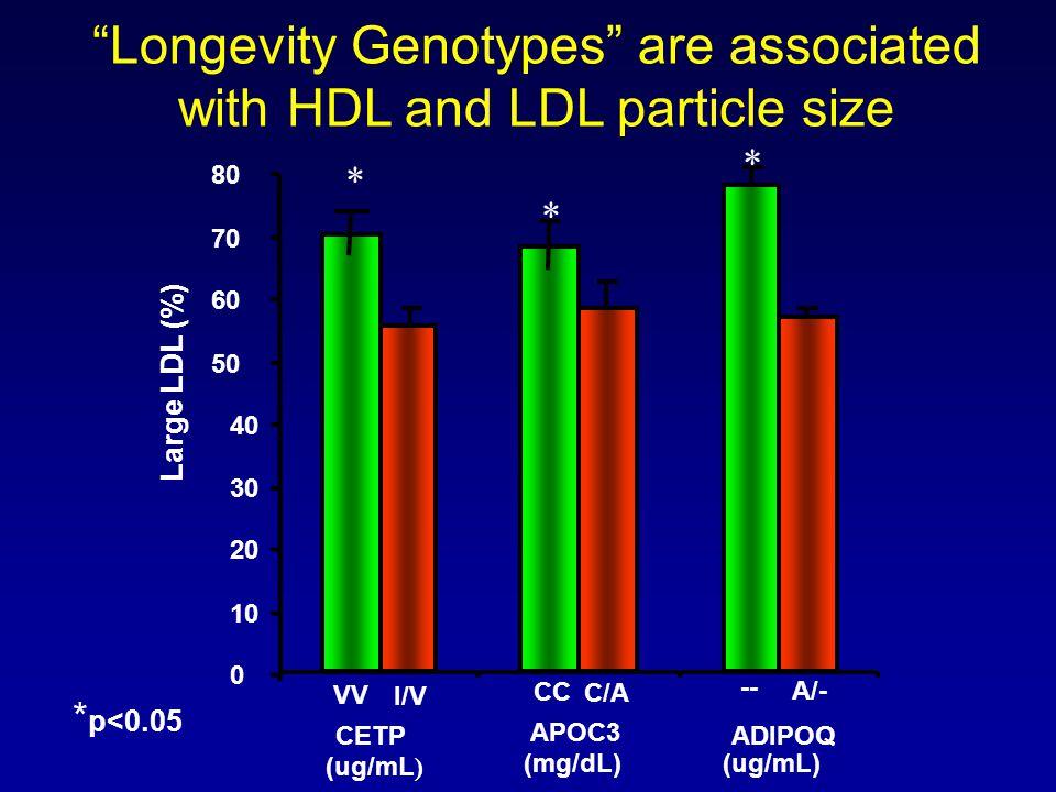 0 10 20 30 40 50 60 70 80 CETP (ug/mL ) ADIPOQ VV I/V Large LDL (%) (ug/mL) -- A/- * APOC3 (mg/dL) CC C/A * * p<0.05 Longevity Genotypes are associate