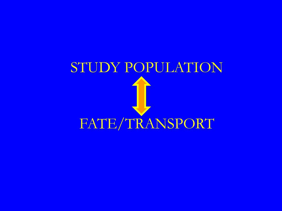 STUDY POPULATION FATE/TRANSPORT