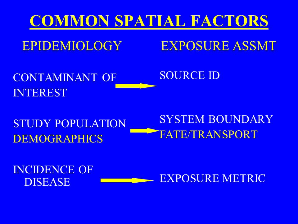COMMON SPATIAL FACTORS EPIDEMIOLOGY CONTAMINANT OF INTEREST STUDY POPULATION DEMOGRAPHICS INCIDENCE OF DISEASE EXPOSURE ASSMT SOURCE ID SYSTEM BOUNDAR