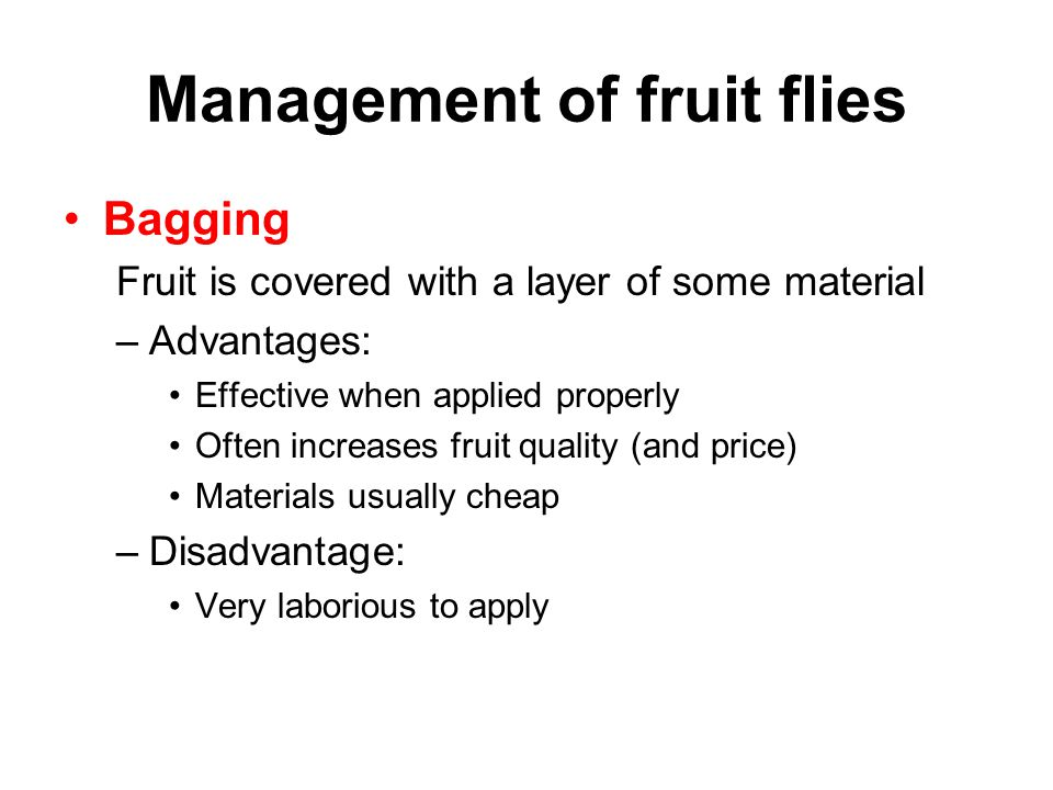 Management of fruit flies Bagging Fruit is covered with a layer of some material –Advantages: Effective when applied properly Often increases fruit qu