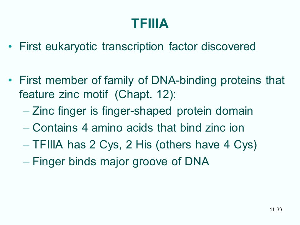 11-39 TFIIIA First eukaryotic transcription factor discovered First member of family of DNA-binding proteins that feature zinc motif (Chapt. 12): –Zin