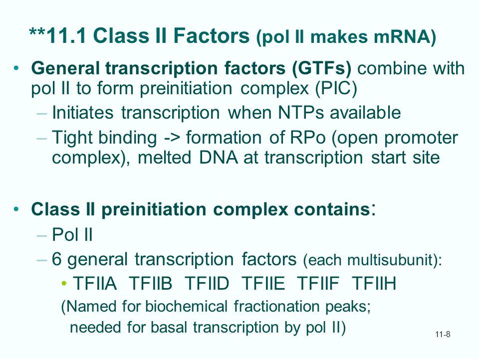 11-8 **11.1 Class II Factors (pol II makes mRNA) General transcription factors (GTFs) combine with pol II to form preinitiation complex (PIC) –Initiat
