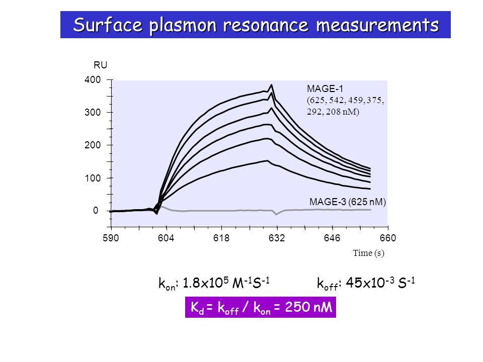 Surface plasmon resonance measurements 590604618632646660 Time (s) 0 100 200 300 400 RU MAGE-3 (625 nM) MAGE-1 (625, 542, 459, 375, 292, 208 nM) k on : 1.8x10 5 M -1 S -1 k off : 45x10 -3 S -1 K d = k off / k on = 250 nM