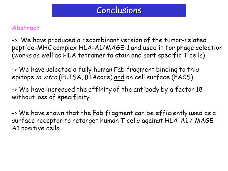 Conclusions Abstract -> We have produced a recombinant version of the tumor-related peptide-MHC complex HLA-A1/MAGE-1 and used it for phage selection (works as well as HLA tetramer to stain and sort specific T cells) -> We have selected a fully human Fab fragment binding to this epitope in vitro (ELISA, BIAcore) and on cell surface (FACS) -> We have increased the affinity of the antibody by a factor 18 without loss of specificity.